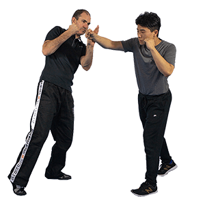 Krav Maga Punch Defence